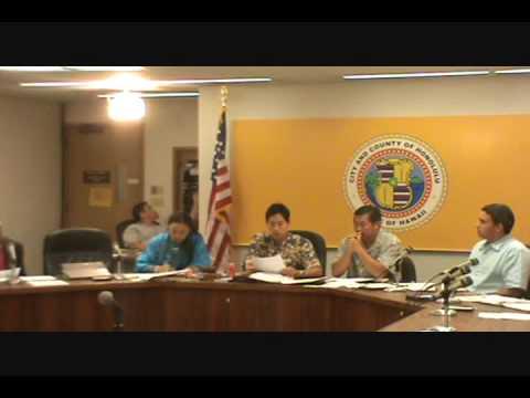 HI-01; 2010 4.7., Charles Djou, Committee meeting, Part 3 of 4.wmv