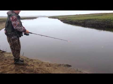 Рыбалка на спининг Нягань 2015
