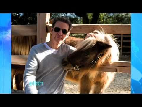 Vance DeGeneres Gets Close with Ellen's Horses
