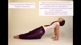 Видео уроки Открытой йоги. Пурвоттанасана. Поза наклонной плоскости.