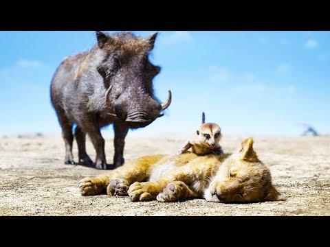 "THE LION KING ""Pumbaa Timon & Simba"" Clip"