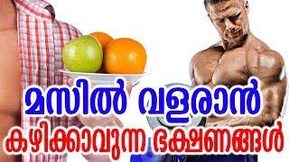 മസിൽ വളരാൻ കഴിക്കാവുന്ന ഭക്ഷണങ്ങൾ | Best foods for muscle growth |  Muscle-Building Foods Tips