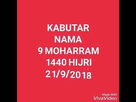 KABUTAR NAMA.  JANAB ANJUM JAFRI      21/9/2018.