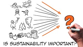The sustainability challenge explained (through animation)