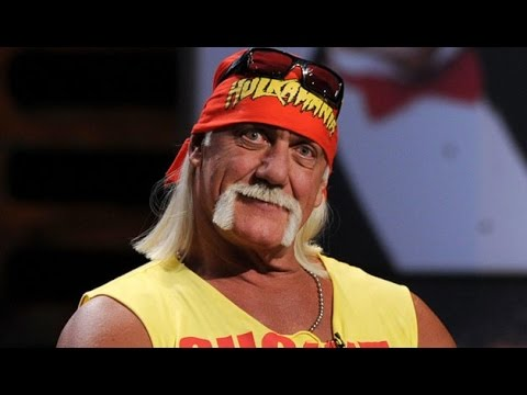 Hulk Hogan Racist Audio (2016 leak and transcript)