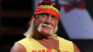 Hulk Hogan Racist Audio (2016 leak and transcript)