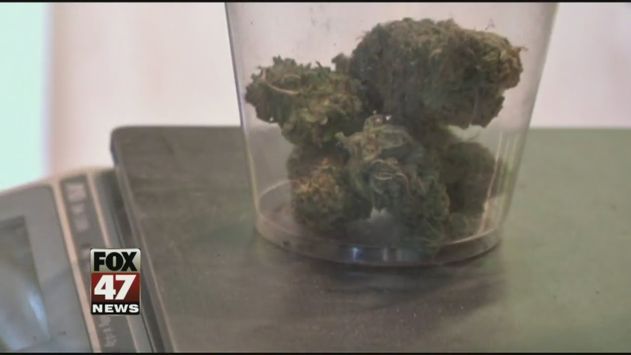 State panel: Allow medical pot use for autism