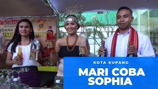 Sophia [Sopi Asli NTT]