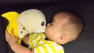 新生兒安撫神器 蕉香海豚寶寶