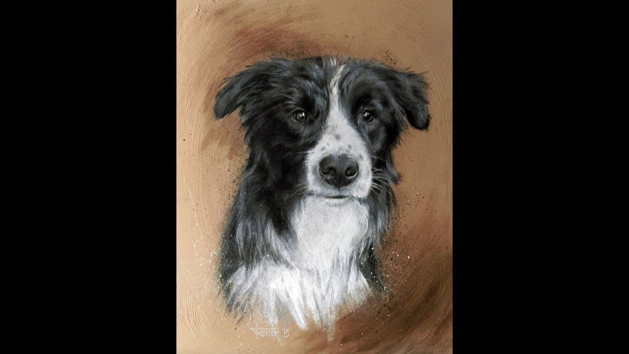 Speed Painting Border Collie Snow Youtube