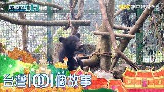 打開森林黑盒子 黃美秀奉獻黑熊保育二十年 part3 台灣1001個故事