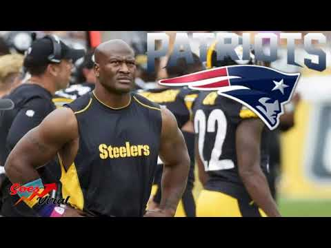What James Harrison Joining the Patriots Means!!