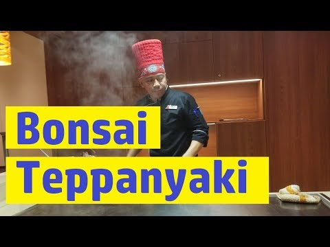 carnival-horizon-bonsai-teppanyaki-full-meal-and-menu