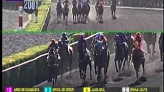 Vidéo de la course PMU PREMIO ARMANDO ALARCON DEL CANTO