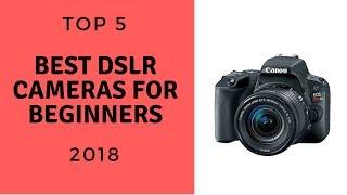 TOP 5: Best DSLR Cameras For Beginners 2018
