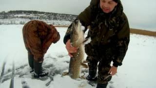 Зимняя рыбалка. Ловля щуки на жерлицы. Щука на живца. Усовка. По старым местам.