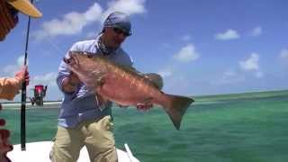 Angeln in Kuba -- Fishing in Cuba Spin & Fly - Action for Bonefish & Snapper