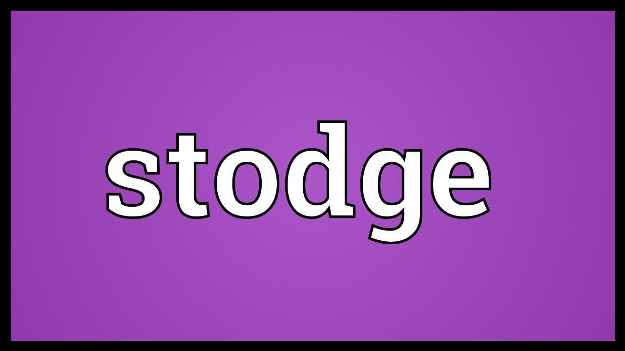 Image result for stodge