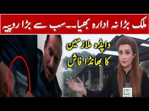 Corruption in WAPDA Exposed | Pukar with Anila Zaka | Neo News