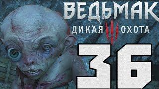 Прохождение Ведьмак 3 Дикая Охота — #36 (Затишье перед бурей)