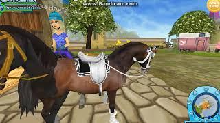 выполнения заданий и уход за лошадью