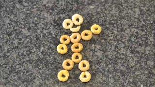 Breakfast Time (Action Cheerios)