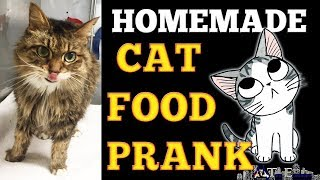Cat Food Prank | Topper Entertainment