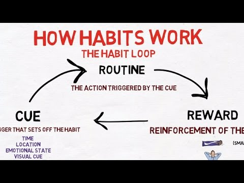 How To Stick To New Year Resolutions - Power of Habit by Charles Duhhig