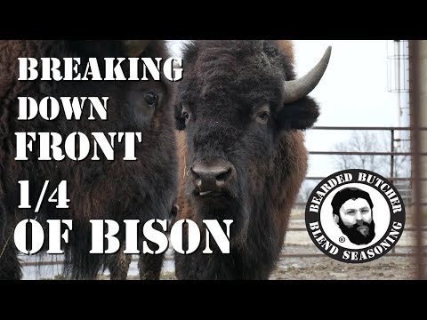 How to Cut a Front Quarter of Bison! (Part 1)