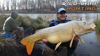 Döme Gábor - Vadvízi kalandok 25. rész - Cserkelő pontyhorgászat(Bővebb információ: http://www.haldorado.hu/articles.php?articleid=4474 A vadvízi horgászatok során csupán egy dolog biztos: HOGY SEMMI SEM BIZTOS!, 2015-05-11T04:48:21.000Z)