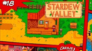 Vídeo Stardew Valley
