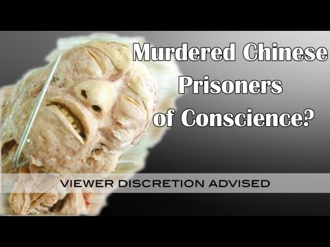 Are Plastinated Bodies Murdered Chinese Prisoners of Conscience?  China Uncensored