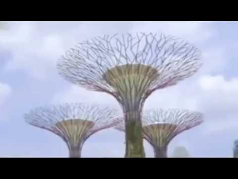 Singapore Tourism Board Deleted Video (Full Original)