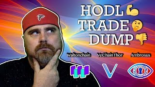 Hodl, Trade, or Dump: VeChainThor vs Waltonchain vs Ambrosus