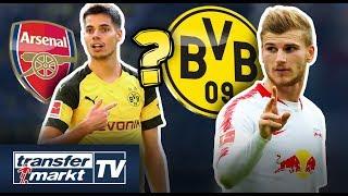 BVB-Gerüchte: Werner-Offerte geplant? – Interessenten für Weigl & Rode | TRANSFERMARKT