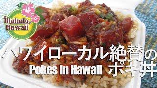 ハワイの今をお届けする「MahaloHawaii」 日替わりでハワイ在住Mahaloガ...