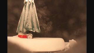2010 blizzard time lapse 20 hours in 40 seconds