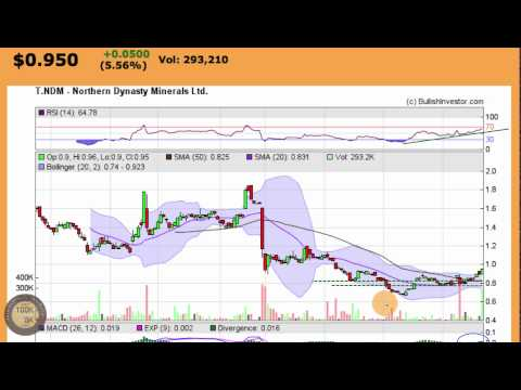 Northern Dynasty Minerals Ltd (NDM) Bottom Play Stock Chart