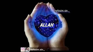 ALLAH  dualarımızı qəbul etsin İNŞƏLLAH 🤲