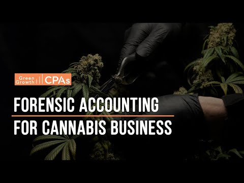 forensic-accounting-for-cannabis-business