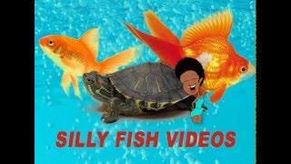 Silly Fish Videos -  Nani Nani Kids