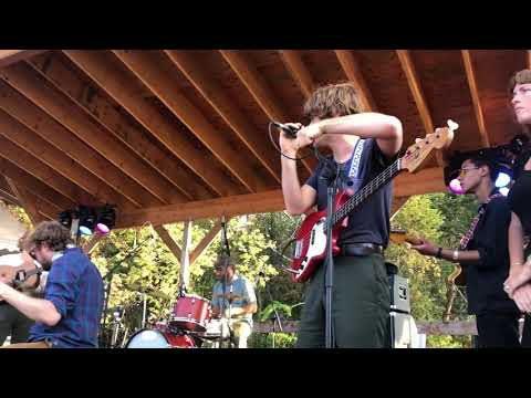 Woods, Kevin Morby & more cover Purple Mountains at Woodsist Fest (David Berman tribute)
