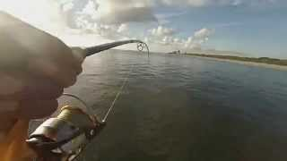 Bluefish Broke my Pole