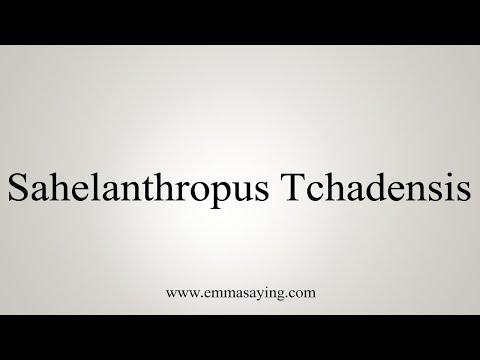 How To Pronounce Sahelanthropus Tchadensis