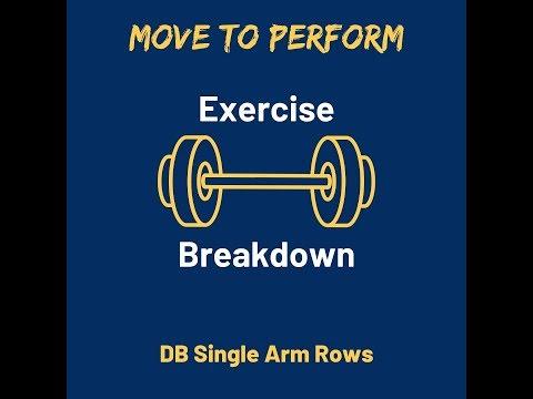Exercise Breakdown: DB Single Arm Row