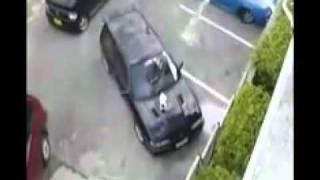 ZA-Auto.ru - Жестко согнали кошку с капота