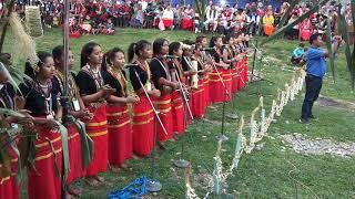 Opening song from karpung karduk folk music academy Rayang