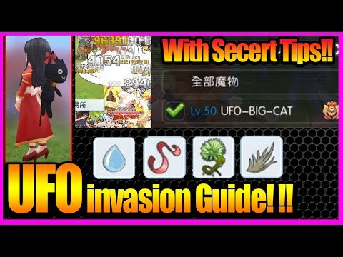 Big Cat UFO invasion Guide!! With Secert Tips! [Ragnarok M Eternal Love]