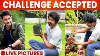 Thalapathy Vijay Accepted Mahesh Babu's Green India Challenge | Planted Sapling In His Garden - 12-08-2020 Tamil Cinema News