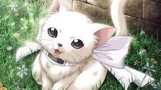 фото мимимишный котят